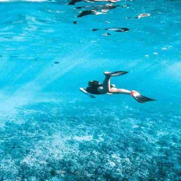Snorkeling in Andaman & Nicobar