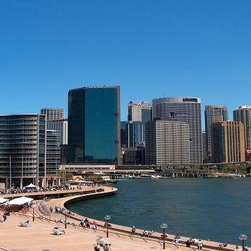 Sydney City 11
