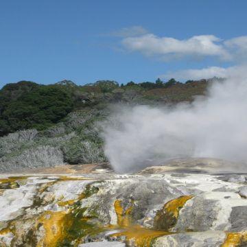 Rotorua Thermal Valley