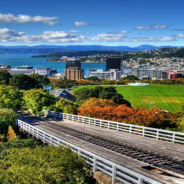 Wellington 6