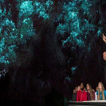Waitomo Glow Worm Caves 5