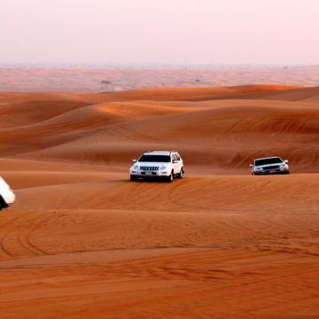 Dubai Desert Safari 11